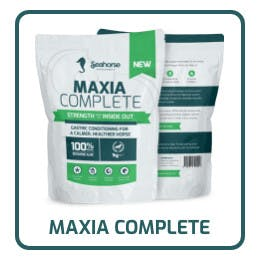 Maxia complete icon 3